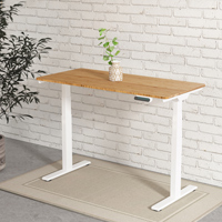Electric Height Ajustable Standing Desk EQ3-48