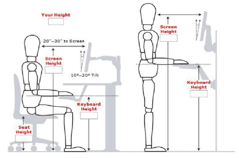 an image of proper height adjustments