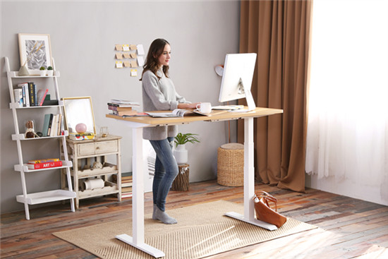 Comparing the SHW Desk and the FlexiSpot EN1 Desk