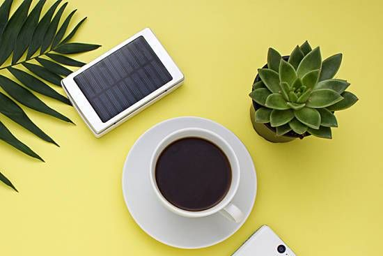 Coffee cup, plant and phone on a table